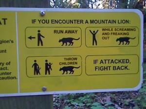 Lion Avoidance