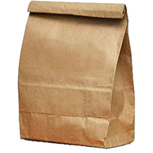 We lived in the days before insulated lunch bags. We went through a lot of these.