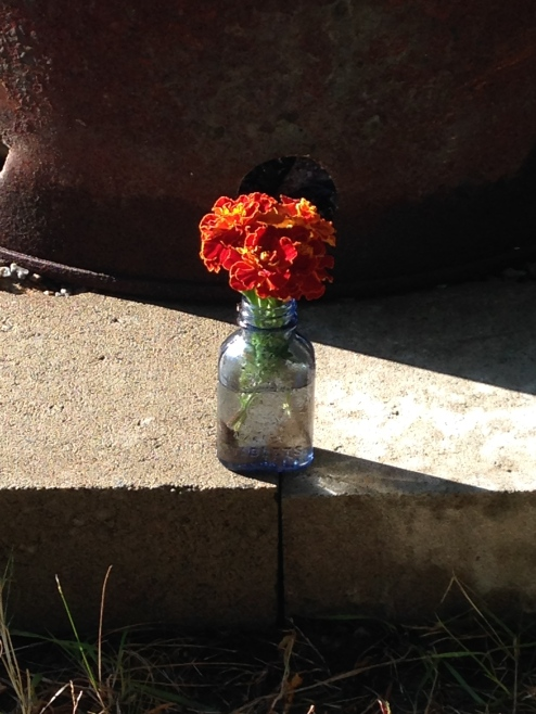 So exciting that I took this barely-blue milk of magnesia bottle that my Paul pulled out of the ground the other day, and put some marigolds in it in front of the fire pit for a decoration. I'm not sure anyone saw it before we had to move them so we could put a fire in the fire pit, though.